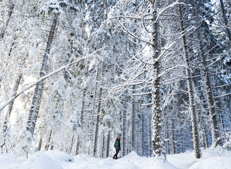 Click here for the TOP 5 ways to stay fit this winter!