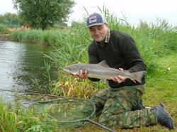 Avon salmon