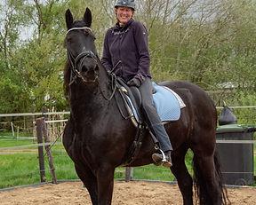 2 jarige paarden