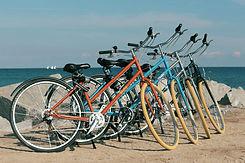 Bike Colors.jpeg