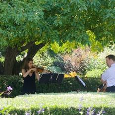 Shady Wedding in Central Park