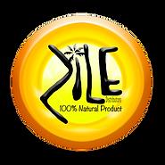 Zile Logo