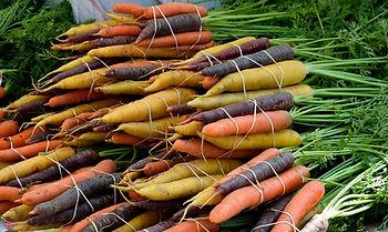 vegetable-3302546_960_720.jpg