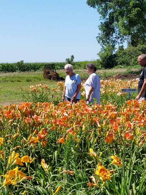 PGC Members at Hillsdale Lily Farm July 2018