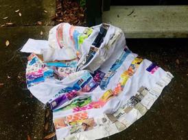"""Collected Litter, St Petersburg FL"""