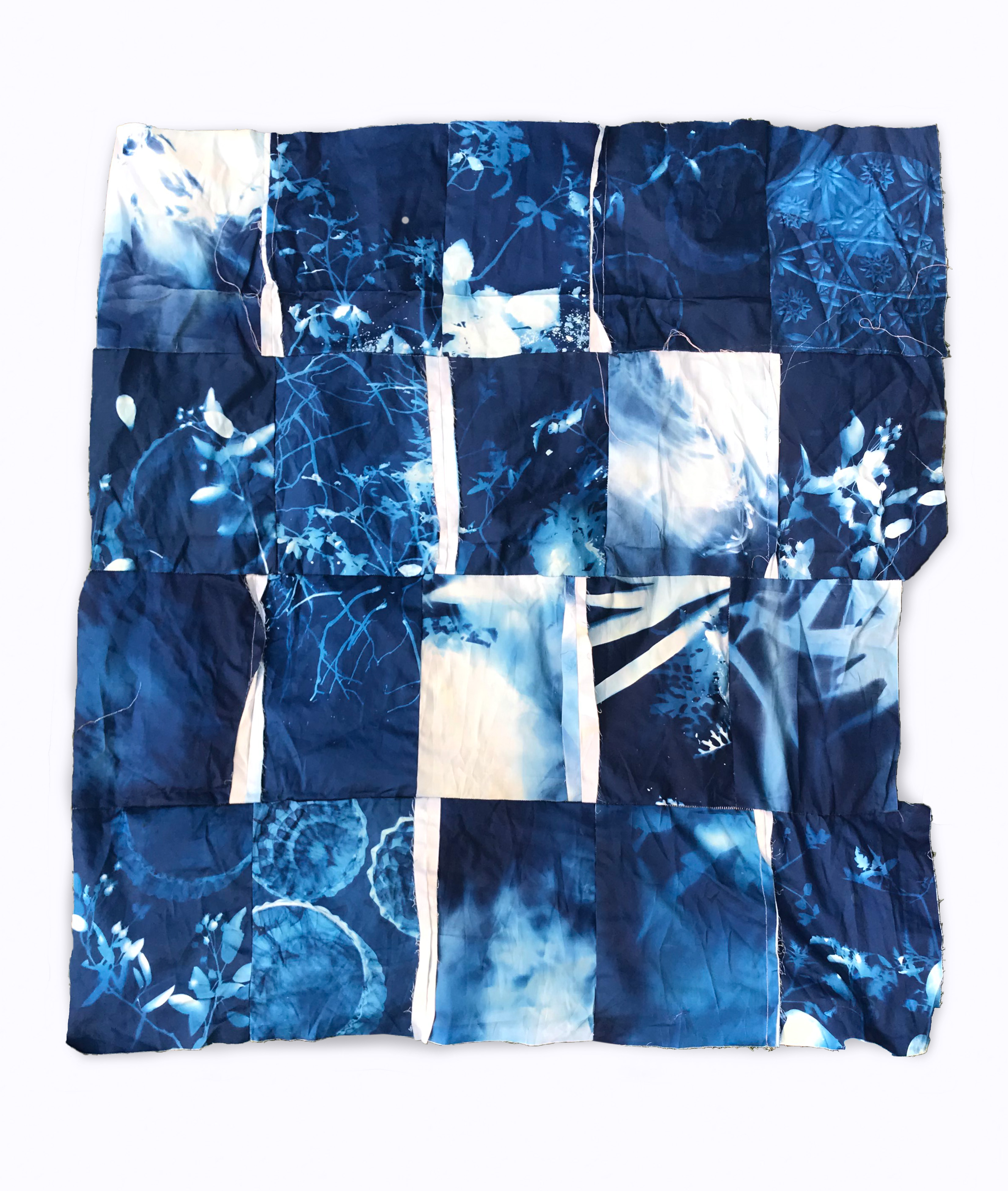 Cyanotype plants.jpg