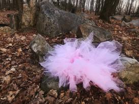 """""""Rib Mountain Blossom"""""""