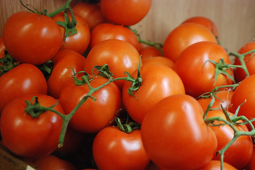 Best Tomatoes