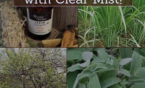clear mist - purifyier