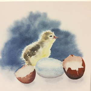 Chick and Eggs