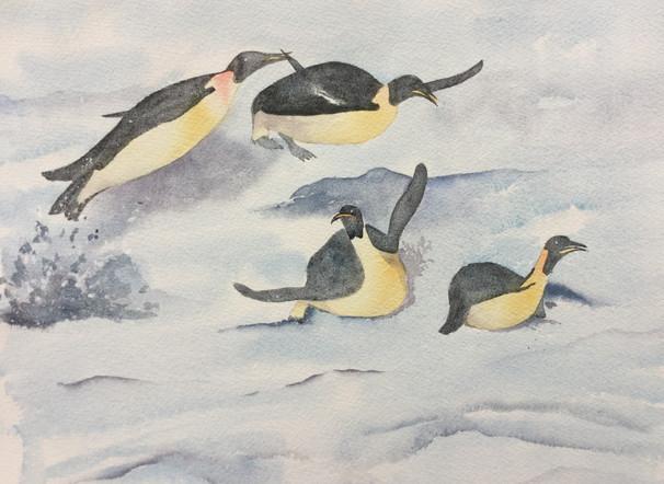 Emperor penguines