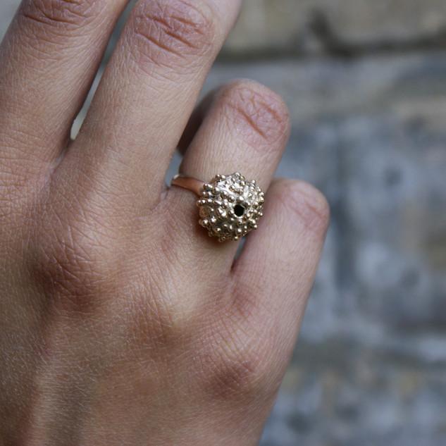 Fiona's sea urchin ring model1.jpg