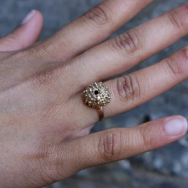 Fiona's sea urchin ring model2.jpg
