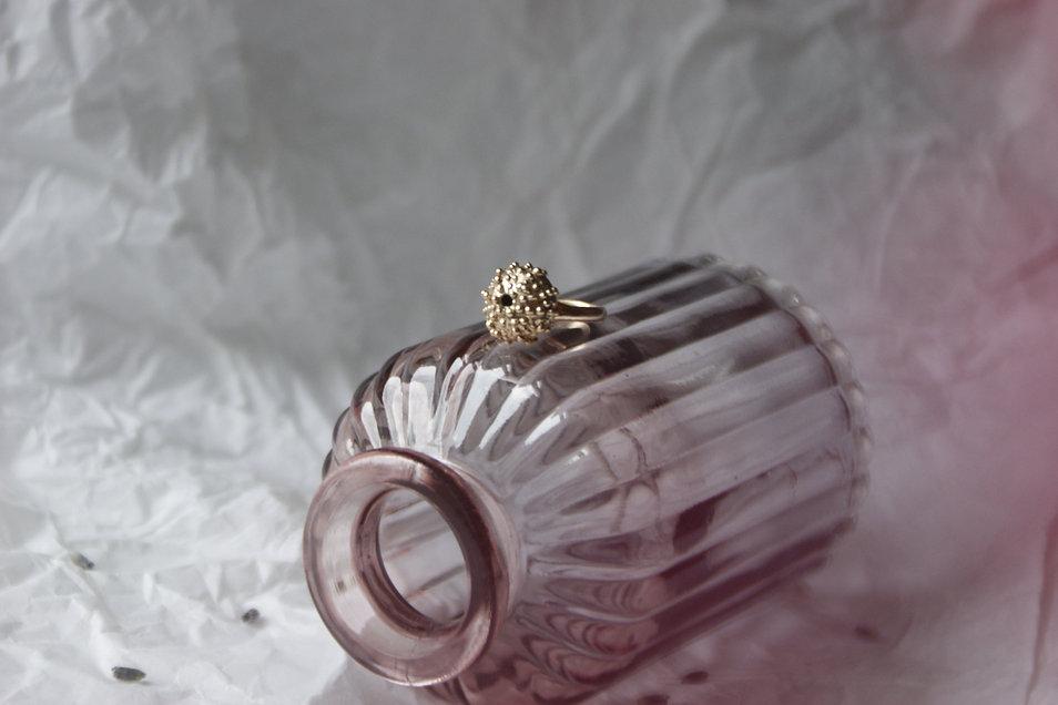 Fiona's sea urchin ring.JPG