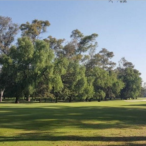 COUNTRY CLUB COYOACAN