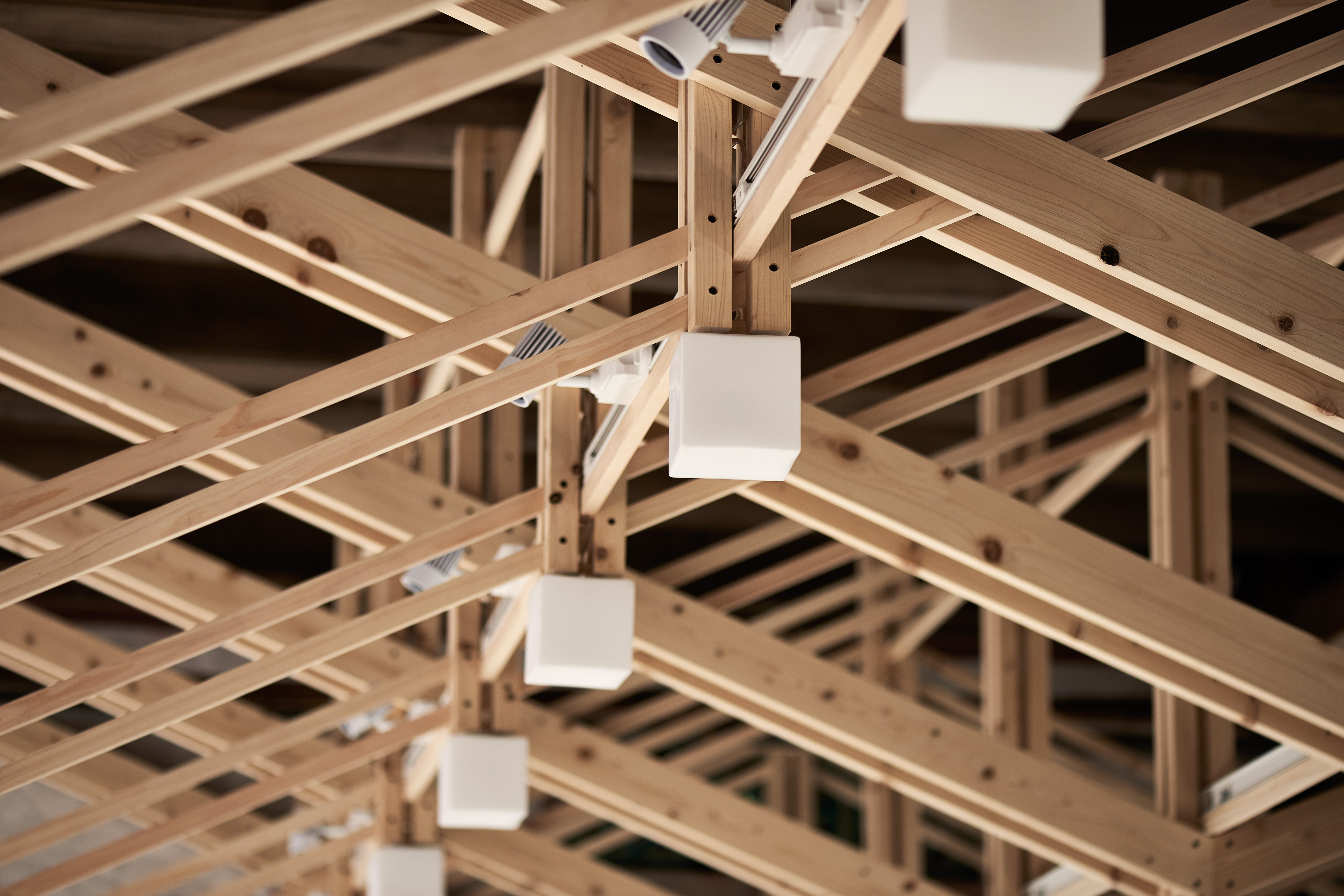 The Inverted Trusses