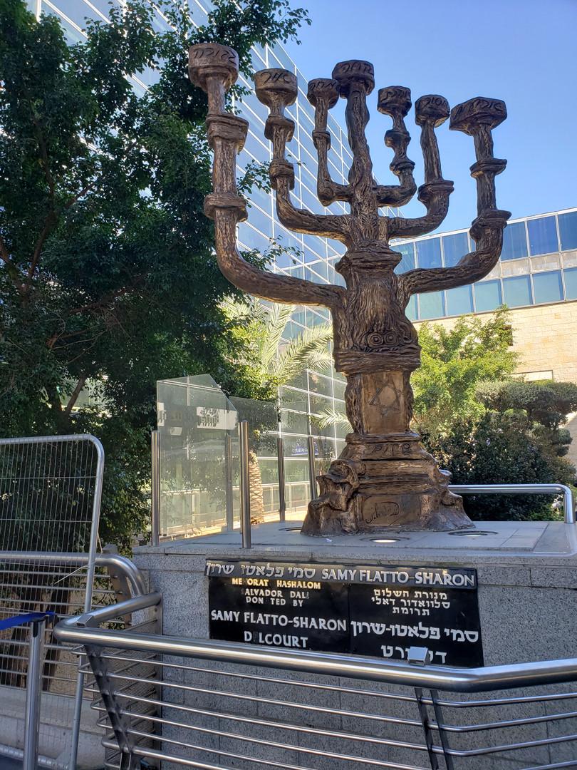 Israel Samy Flatto Sharon.jpg