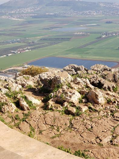 View in Israel 2.jpg