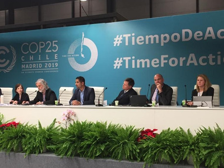 COP25: Another Year, Another Missed Opportunity on Carbon Markets