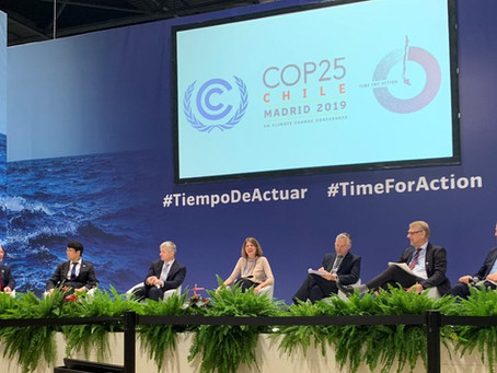 The Santiago Action Plan: A Silver Lining on Finance on the Margins of COP25