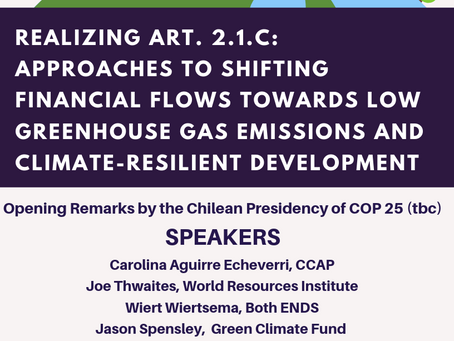 Realizing Art. 2.1C: Approaches to Shifting Financial Flows Towards Low Greenhouse Gas Emissions