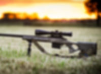 Gunsmithing Services, Perth, WA