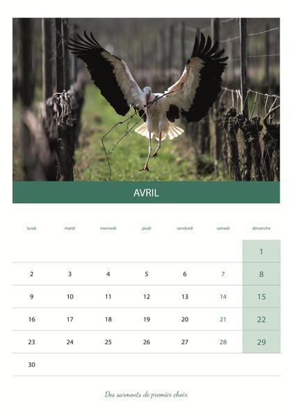 calendrier_VIN5.jpg