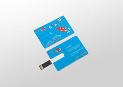 USB_Card-SHADOK_recto_verso.jpg