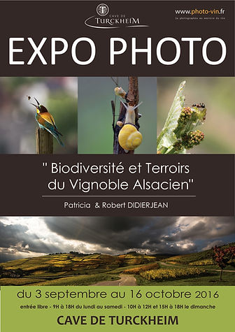 Affiche EXPO Didierjean TURCKHEIM reduit