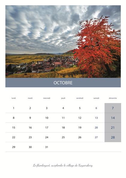 calendrier_VIN11.jpg