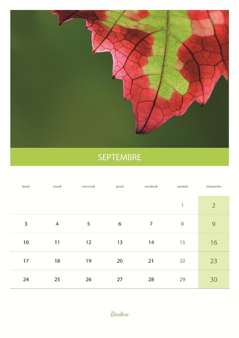 calendrier_VIN10.jpg