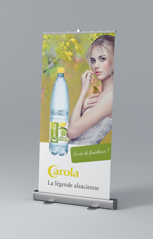 Mockup_Rollup_side_100x200gris.png