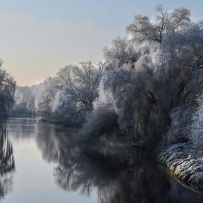 Photographier la nature en hiver