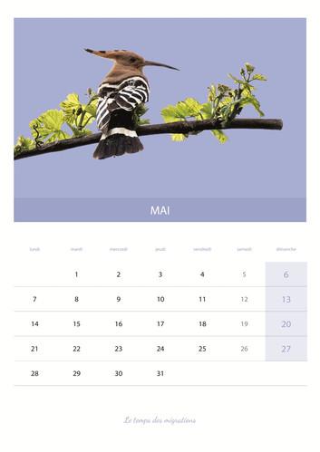 calendrier_VIN6.jpg