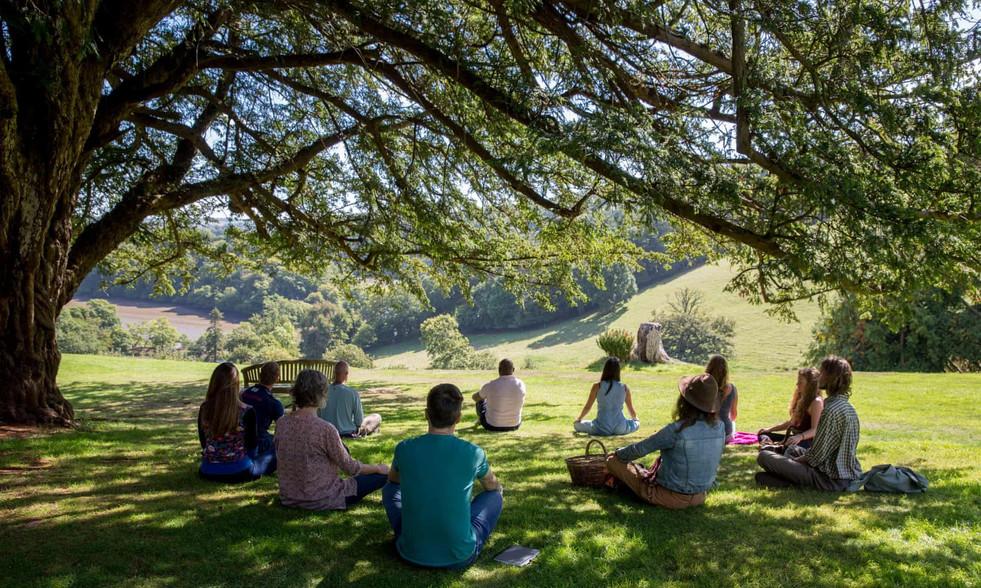 Team Building & Meditation
