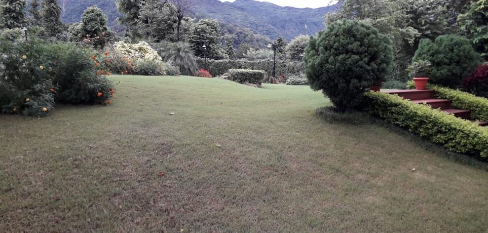 Lush Green Lawn.jpeg