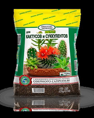 БиоГрунт ДЛЯ кактусов и суккулентов 2,5л