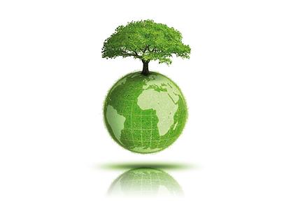 img-planter-arbre-vert.png