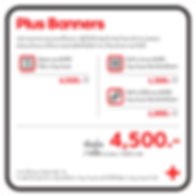 Web new price Services-19.png