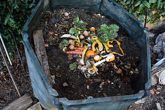 composting-container-istock-curtoicurto.