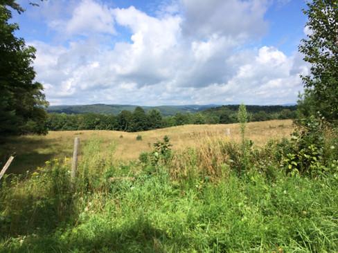 Scenic fields 2