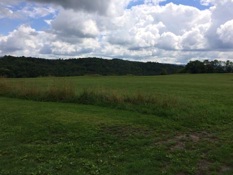Scenic fields 1