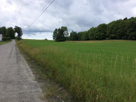 Scenic fields 3