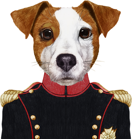 Napoleon%20Dog_edited.png