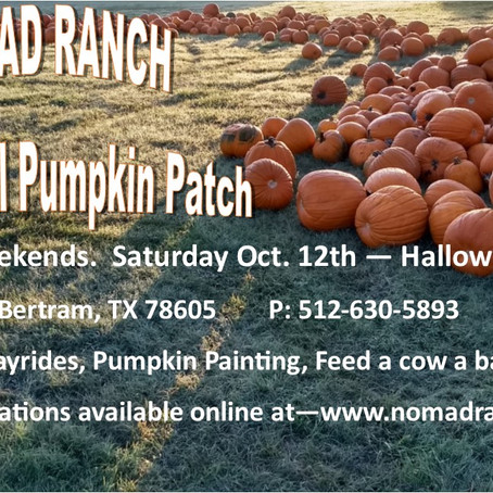 Hope you can join us for our 3rd Annual Pumpkin Patch this October!