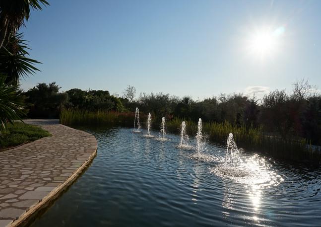 Morgana Garden