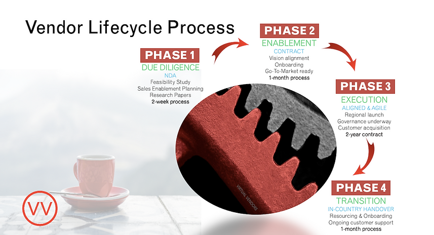 VV Lifecycle Process.png