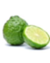 bergamot_fruit_800x.png
