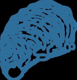 chat_shell_logo