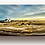 "Thumbnail: ""Paint by Number.""    12""x40"" Acrylic Panoramic"